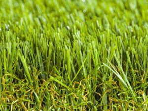 namgrass-green-envie
