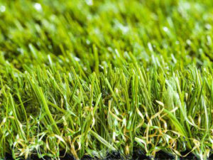namgrass-green-meadow
