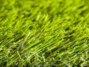 namgrass-green-motion
